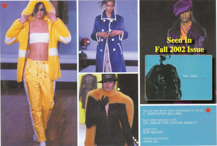 FICA Fall2002a copy